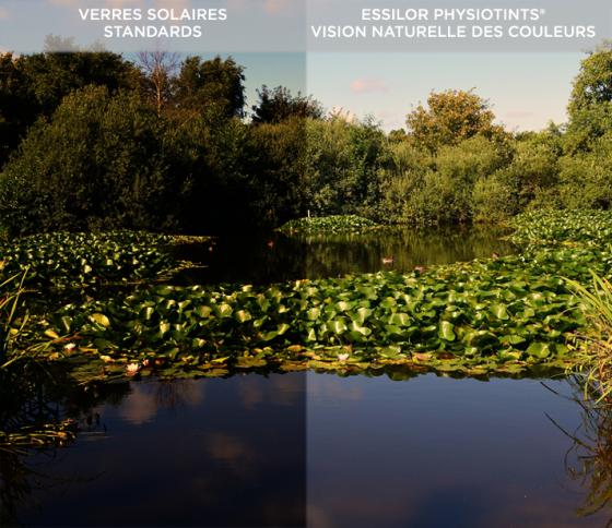 Vision naturelle des couleurs avec PhysioTint d'Essilor